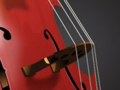 violin-cello-free-vector