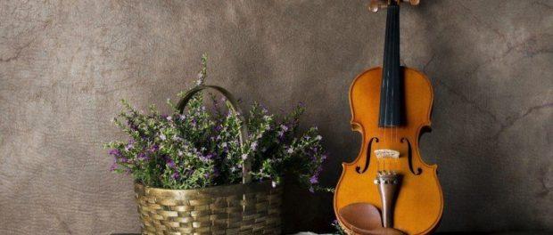 Отчетный концерт учеников Светланы Самойловой по классу скрипки