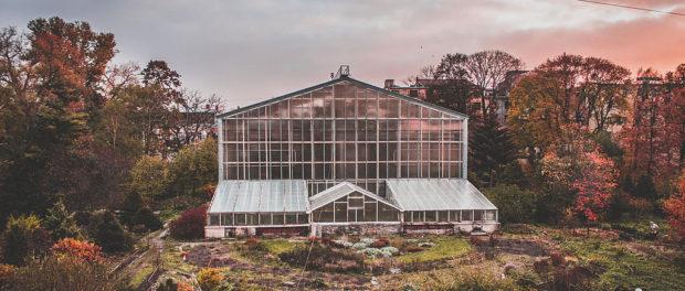 """Cyklus """"Planeta Univerzita"""": povídání o Botanické zahradě"""