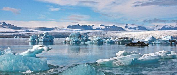 Арктическая онлайн-школа